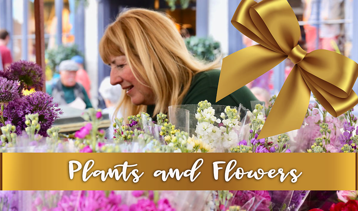 plants-master-copy